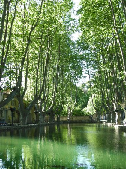 Etang de Cucuron - Maison d'hôtes Provence